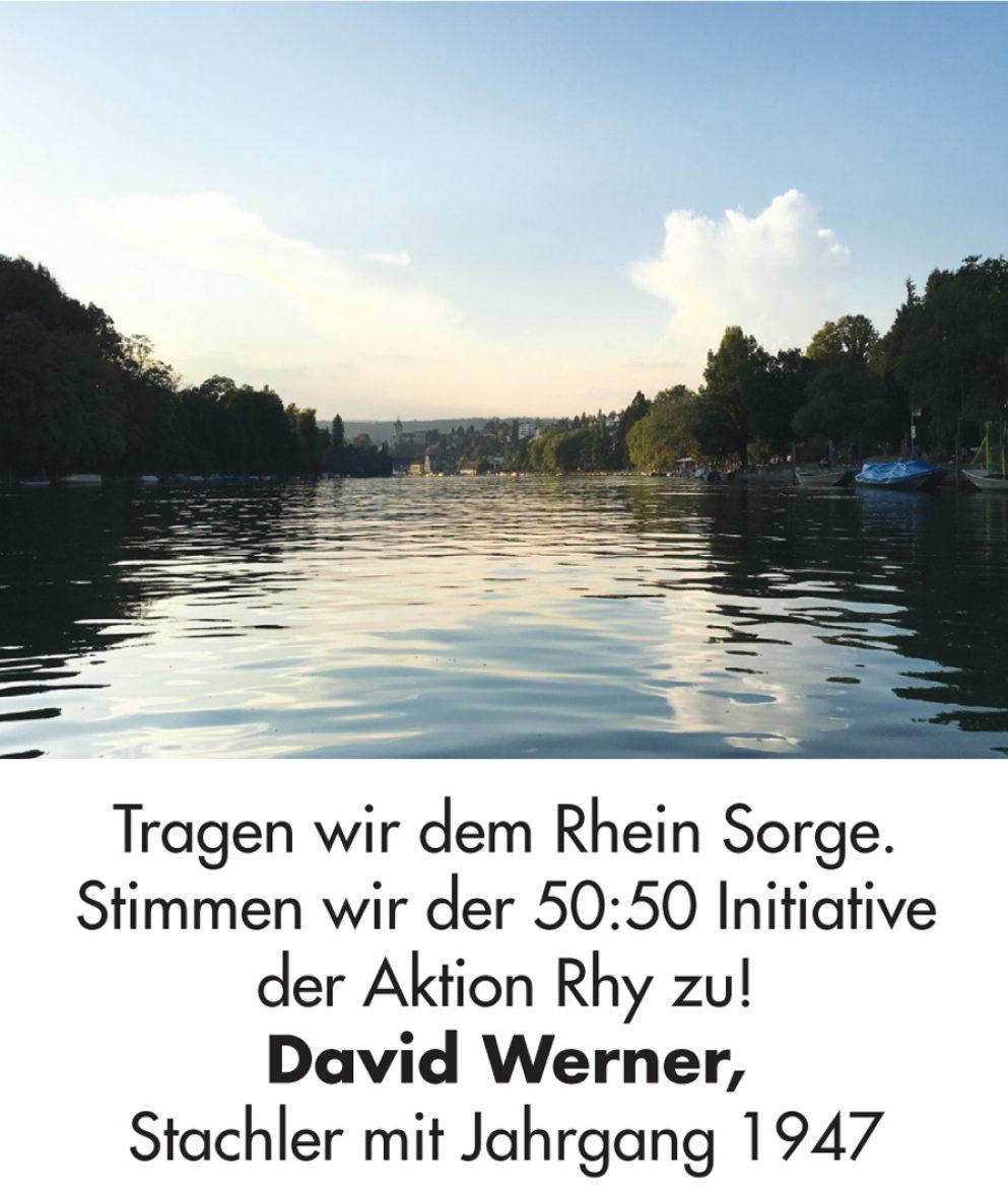 David_Werner